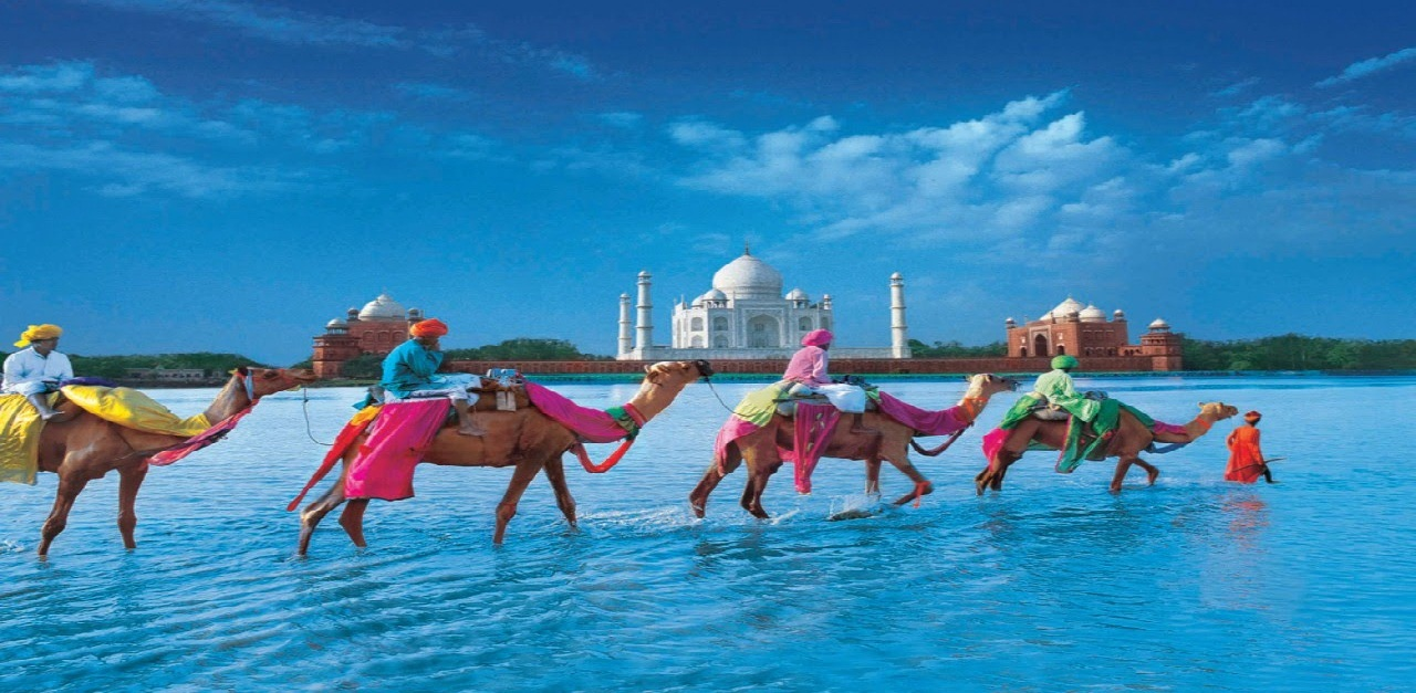 Best Tour Packages Provider in Pitampura